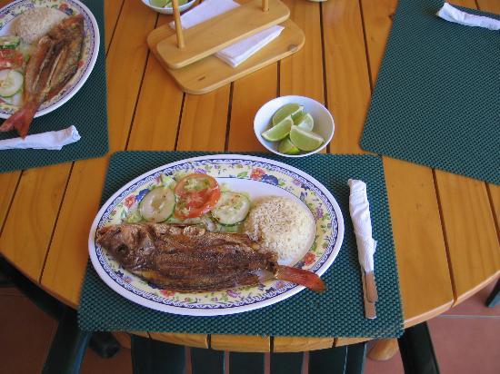 Los Cobanos Village Lodge: Lunch