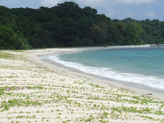 ‪‪Andaman and Nicobar Islands‬, الهند: The Best beach In Asia( sea side)‬