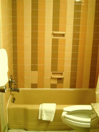 Quality Inn & Suites: Dated Bathroom