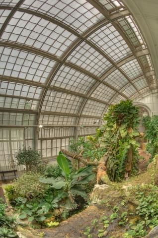 Inside the Palmhouse Butterflyhouse