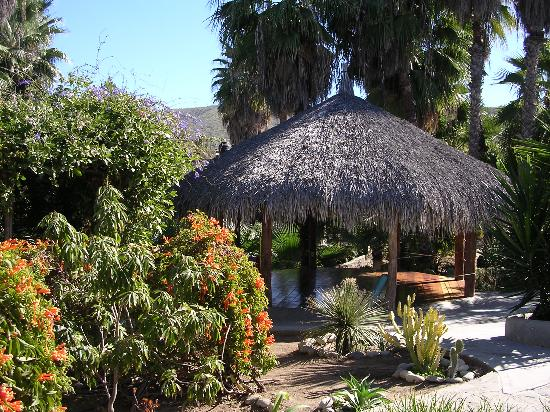 Las Palmas Casitas: Palapa-covered platform for yoga, etc.