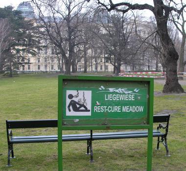 Rest Cure Meadow.....