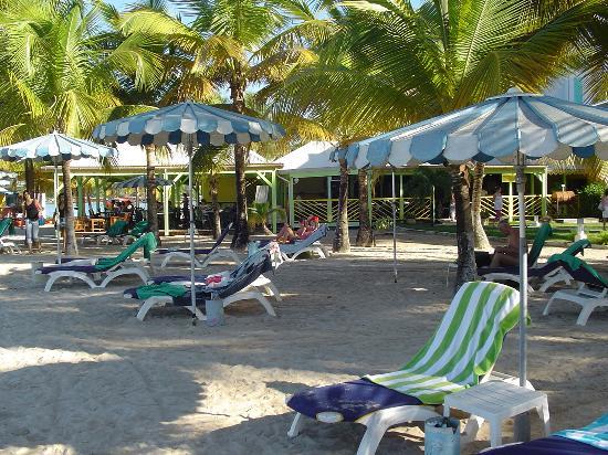 Canella Beach Hotel-Restaurant: Plage + Restaurant