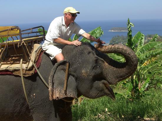 Elephant Ride with Richard