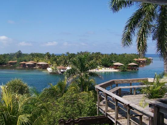 Anthony's Key Resort: View from the dining room