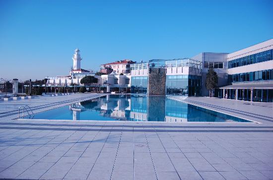 Renaissance Polat Istanbul Hotel : The Pool