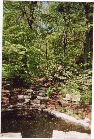 Lauritzen Gardens Omaha's Botanical Center : Woodland Waterfall