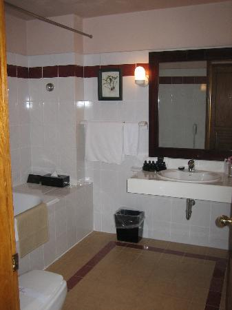 De Syloia Hotel: Spacious new bathroom