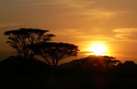 Sun n' Sand Beach : sunset amboseli