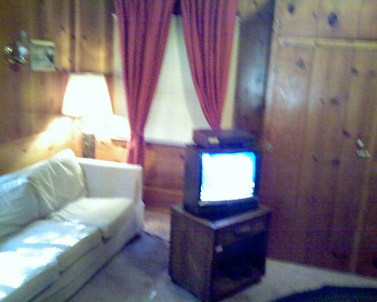 Tahoma Lodge: couch and tv with vcr and dvd hookups, also a futon across from couch