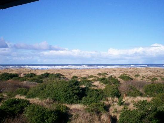 penthouse picture of grey gull ocean shores tripadvisor. Black Bedroom Furniture Sets. Home Design Ideas