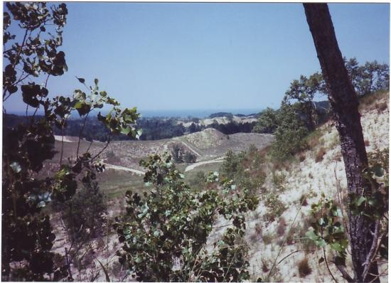 Saugatuck, Μίσιγκαν: View of dunes from jeep tour