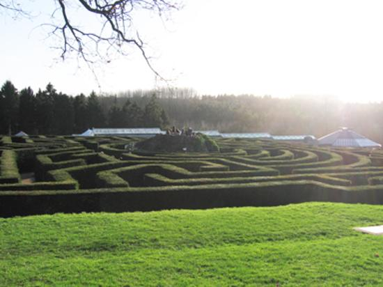The Topiary Maze at Leeds Castle