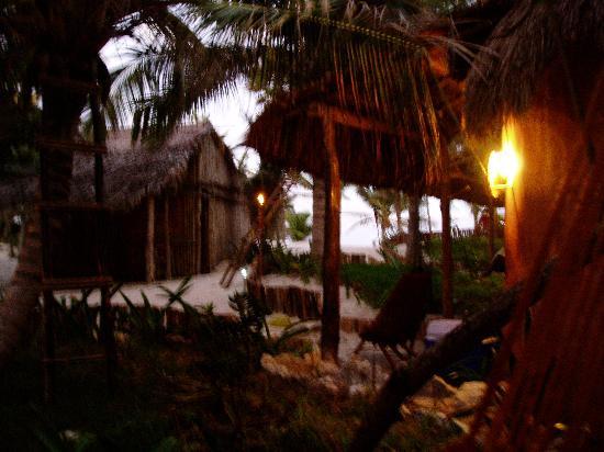 La Zebra Colibri Boutique Hotel: View from my cabana