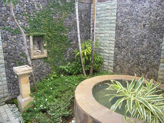 The Damai: outdoor shower and spa