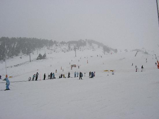 Hotel Crest: the lower slopes during the snow
