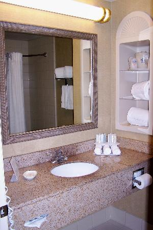 Holiday Inn Express Hotel & Suites New Tampa I-75 Bruce B. Downs: Clean bath