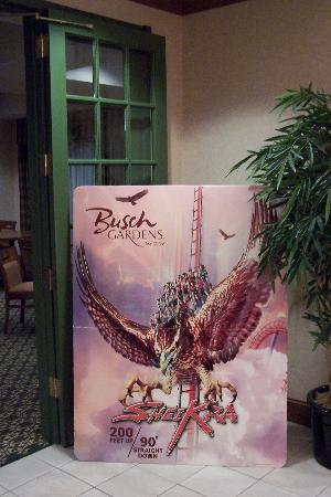 Holiday Inn Express Hotel & Suites New Tampa I-75 Bruce B. Downs: Shiekra! Needs no introduction