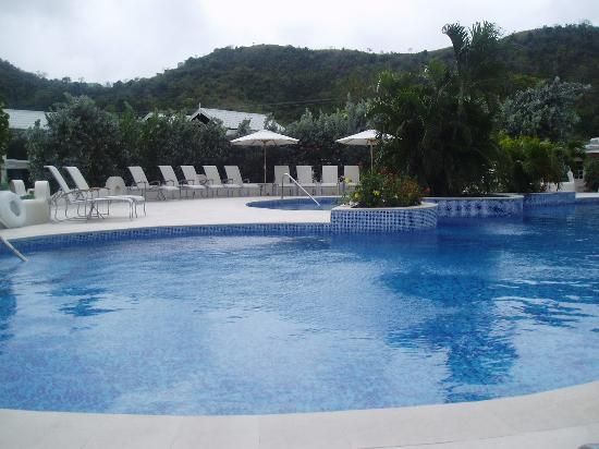 Spice Island Beach Resort: Pool view
