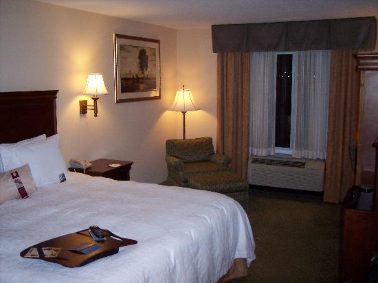 Hampton Inn & Suites Roswell: Standard King Room