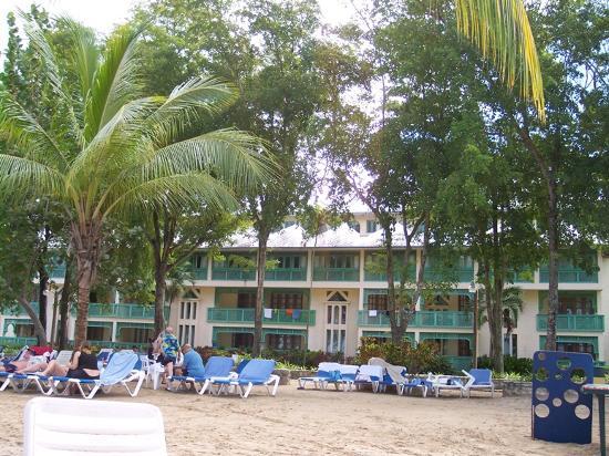 Bilde fra Grand Paradise Playa Dorada