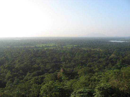 Sigiriya, Sri Lanka: View from not quite the top