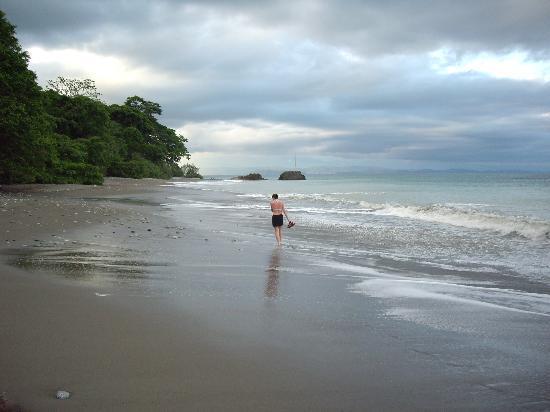 Lapa Rios Ecolodge Osa Peninsula: the shoreline
