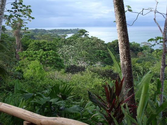 Lapa Rios Ecolodge Osa Peninsula: another view from our private deck
