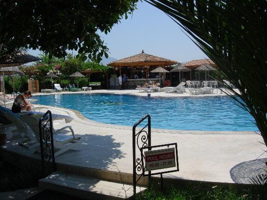 Hotel Asur /Assyrian Hotel: The poolside