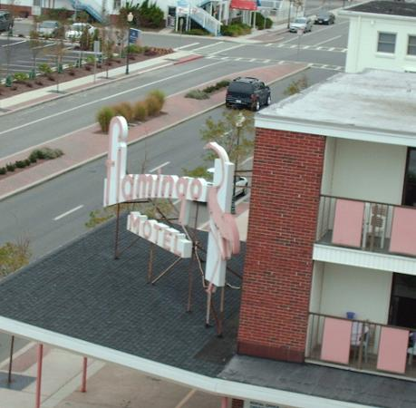 Flamingo Motel: View from the top floor of The Flamngo