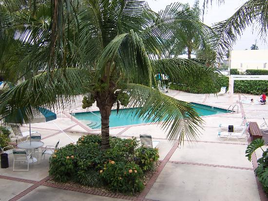 Florida City, Flórida: View of pool area from our door