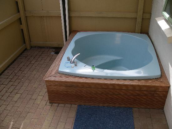 Birchwood Spa Motel: Hot tub - not all that good!