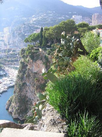 La Condamine, Monaco: Cliff view of Exotic Garden of Monte Carlo
