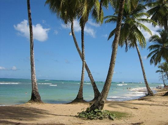 Лас-Терренас, Доминикана: Playa Las Terrenas, republique dominicaine