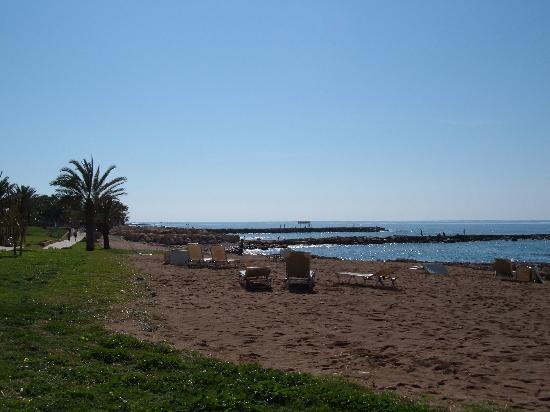 Constantinou Bros Athena Beach Hotel: Hotel beach