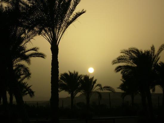 Iberotel Coraya Beach Resort: sunset