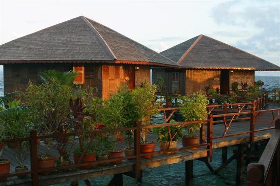 Sipadan Water Village Resort: SWV chalets at sunrise
