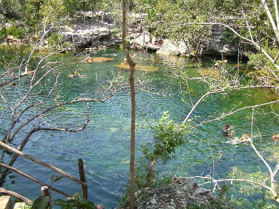 Cenote jardin del eden yucatan all you need to know for Jardin del eden