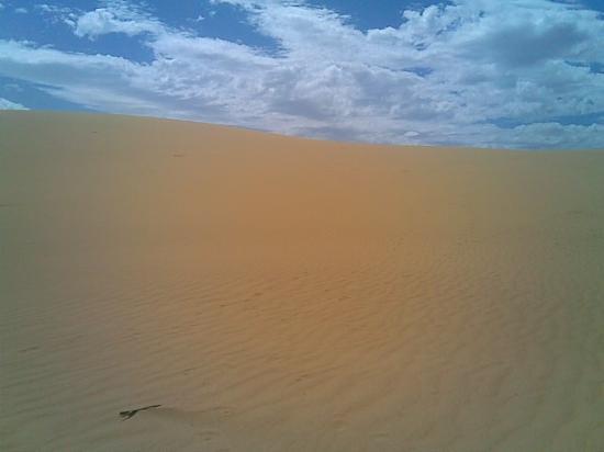 Medanos de Coro National Park: Just desert