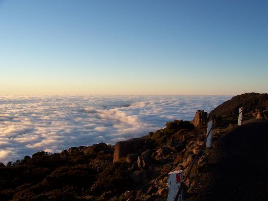 Mount Wellington: early morning above Hobart
