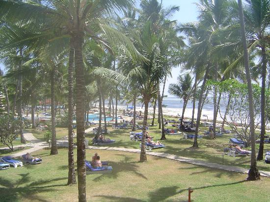 Sun n' Sand Beach : View from upgraded room