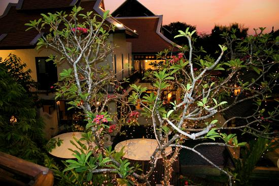 Puripunn Baby Grand Boutique Hotel: Balcony view of garden