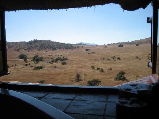 Tshukudu Bush Lodge: The view from the bath!