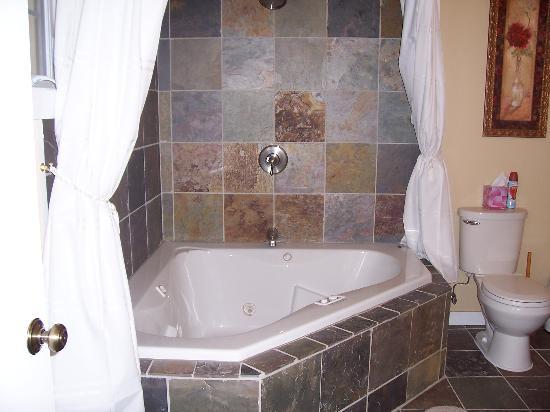 Valle Crucis Bed & Breakfast : Bank Suite bathroom
