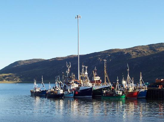 Ardvreck House: Fishing boats at anchor in Ullapool