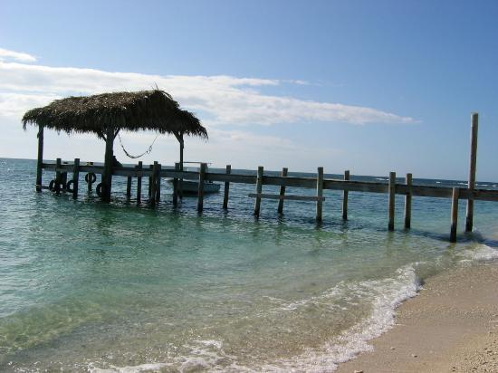 Dive In Caribik