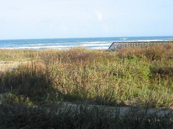 South Padre Island, TX: Walk to the Beach
