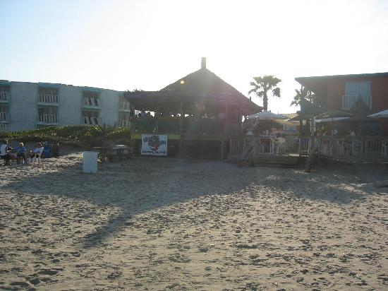 South Padre Island, TX: Wanna Wanna Beach Bar