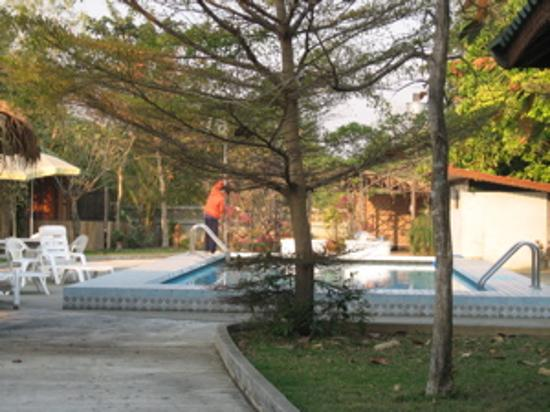 Golden Cupids Hotel: Swimming pool
