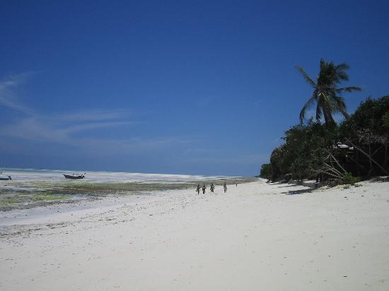 Sazani Beach Lodge: Low tide